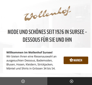 <span>wollenhof-sursee.ch</span><i>→</i>